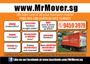 A6_128gsm_Mailer_MrMover_F