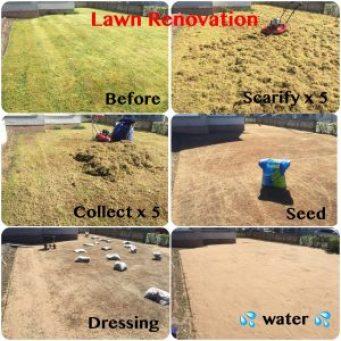 Lawn Renovation 1
