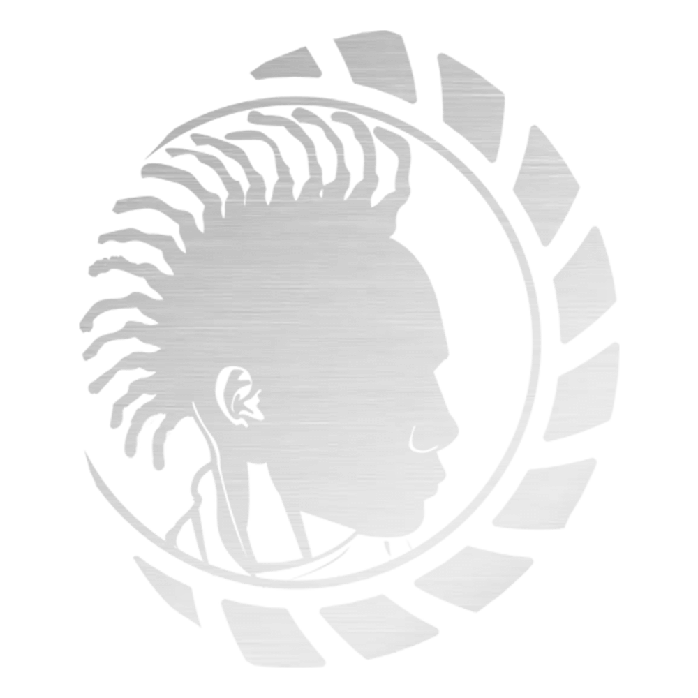 Mr. Naturalz logo