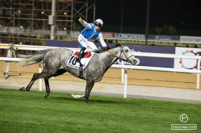 Dubai Horse World Cup 2015