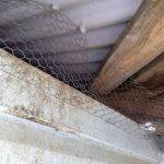 Easy to get through Chicken wire repair