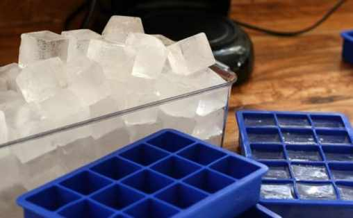 ice cubes in tray