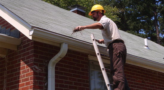 Roof maintenance and cleaning tips