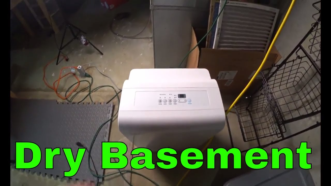 dehumidifying the basement