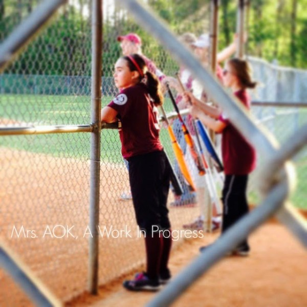Softball-Fence