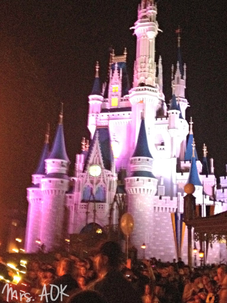 WDW Castle at Night