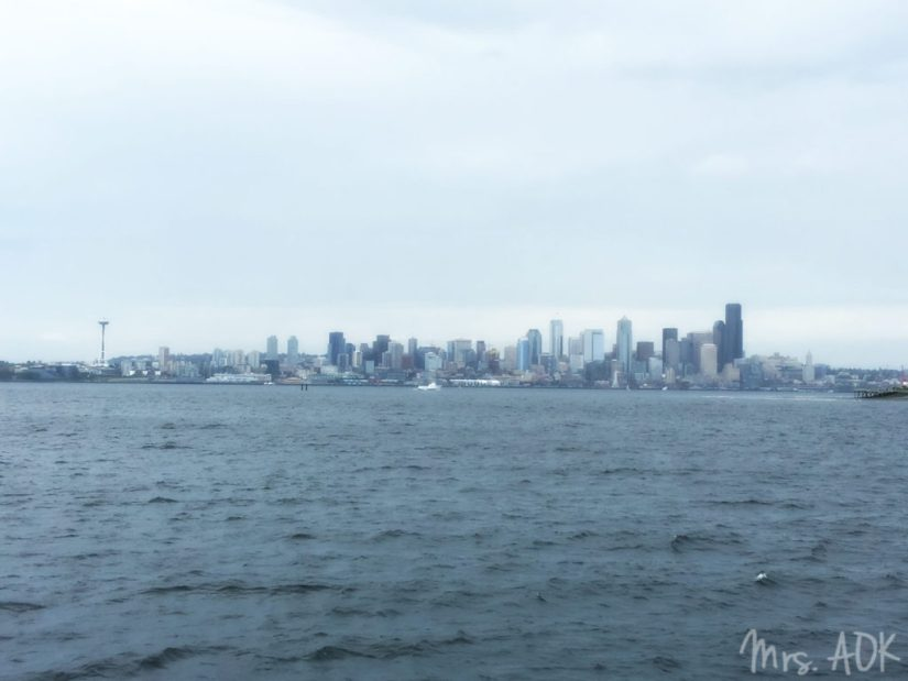 Thank You Notes| Seattle from the water