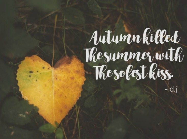 Autumn Killed Summer with the softest kiss. Farewell summer. Hello Fall! It's time to signup for the #SPBoxSwap!! Connect with other bloggers here. :)