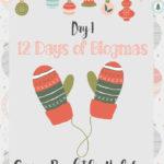 Merry Blogmas 12 Days, 12 Blog + 1 Huge Giveaway {Day 1 Giving back}