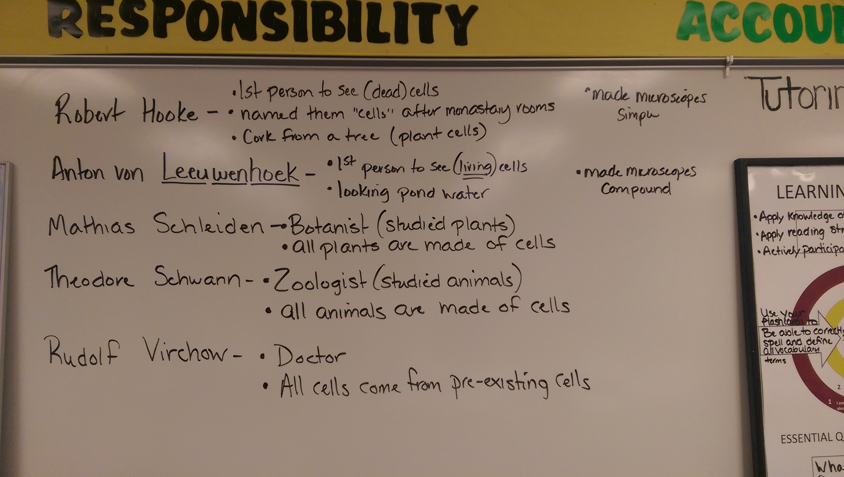 Unit Five Cell Biology