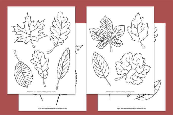 - Free Printable Fall Leaves Coloring Pages - Mrs. Merry
