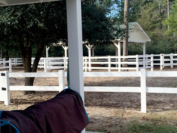 Mrs. Padilly's New Homestead - stables
