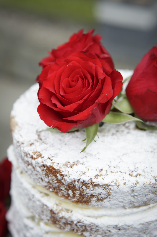 naked cake, Kath davisons, red rose embellishment , silver photography
