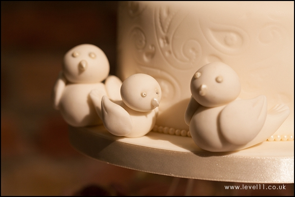 bird detail, wedding cake, confection perfection, level 11 photography