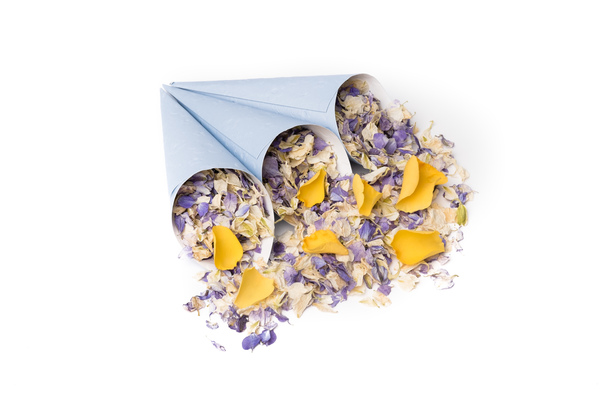 shropshire petals, blue_confetti_cones, summer_sky_and_golden_slumber