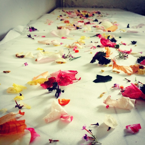 craft workshops, dyeing, textile printing, botanical inks, hen activities
