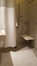shower with fold down seat