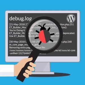 WP Debug Log File Illustration