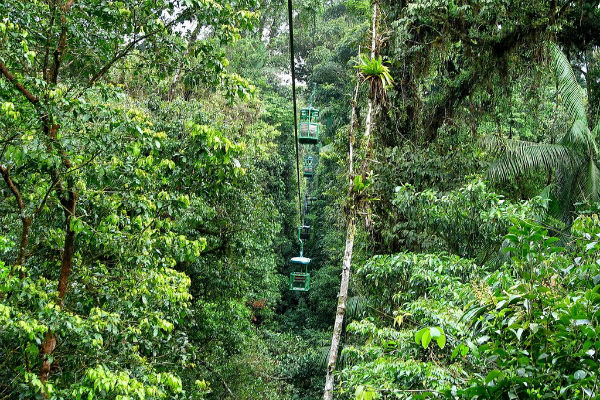 aerial tram through the rainforest canopy of costa rica