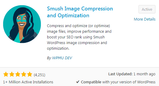 Smush WordPress Plugin