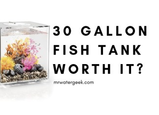 30 Gallon Fish Tank Review