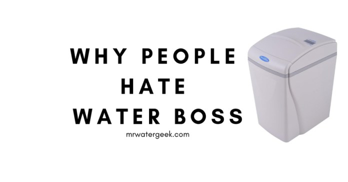 Water Boss Review
