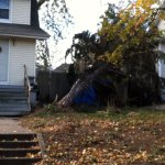 Hurricane Sandy aftermath along Roosevelt Ave., Westwood, NJ (11/5/2012).