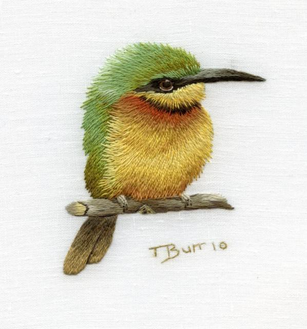 Trish Burr - Little Bee Eater