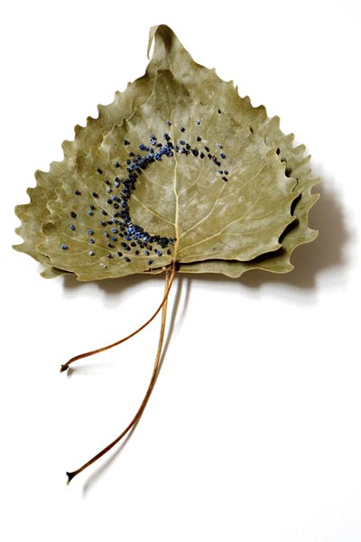 Embroidered Leaves, Hillary Waters Fayle