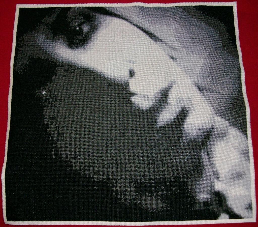 Craftster Pick of the Month – Krafty Karasu's Marilyn Manson Cross Stitch