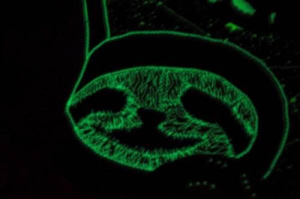 Amazon_Warrior's Rainbow Sloth Mini Quilt - glows in the dark