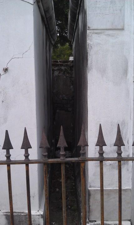 IMAG1236