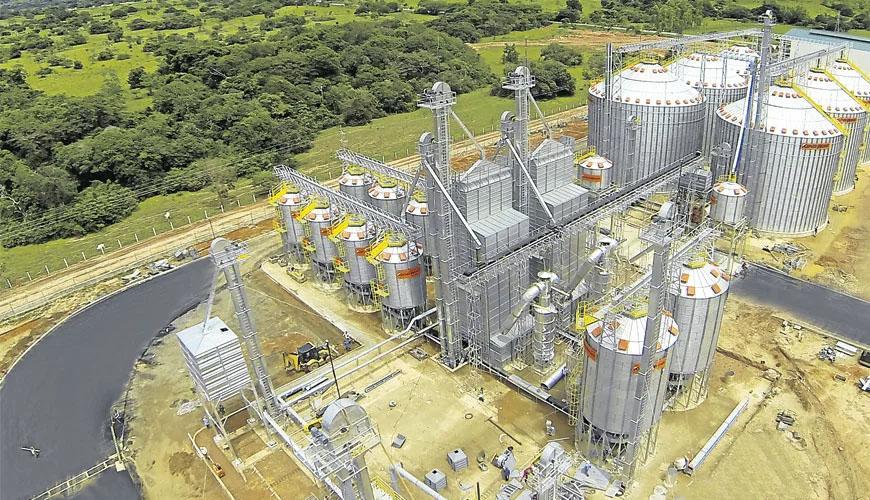 Control de producción y reducción de mermas en Planta Arrocera