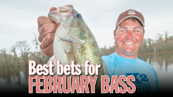 Best bets for February bass