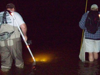Glenn Clark (left) and David Chamberlain ease through the water looking for flounder.