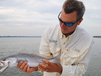 All topwater lures are not created equal; learn when to use big ones, small ones, heavy ones, light ones and ones that wobble wide or not.