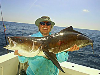 Capt. Tommy Pellegrin suggests targeting smaller rigs and structures for cobia, and making sure you keep your lure moving when sight casting to fish near the surface. Don't stop if the fish charges, or it could very well lose interest.
