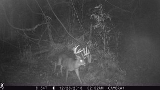 This trail cam photo at 2 a.m. the morning before the buck died assured Turner Smith the trophy deer was still in his core area.