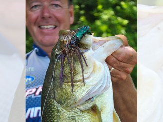 Jigs become productive bass baits when fish are concentrating on crawfish, as they are in late winter and early spring.