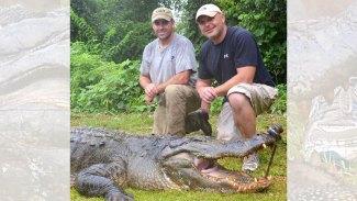 Alligator season, regulations set