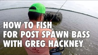 How to fish for post-spawn bass with Greg Hackney