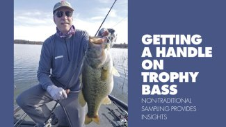 Getting a handle on trophy bass