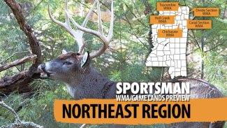 Mississippi's 2020-21 hunting forecast – Northeast Region