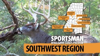 Mississippi's 2020-21 hunting forecast – Southwest Region