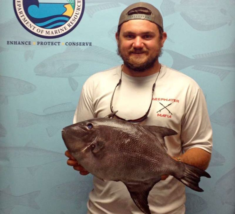 Chad Patti with his Ocean Triggerfish. (Photo courtesy MDMR)