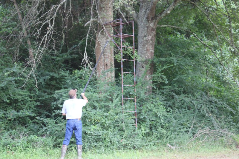 Don't forget to look at ladder stands; they are not immune to damages from recent storms.