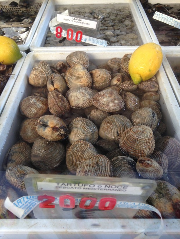 Truffle or Nut Clams