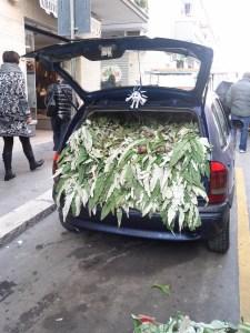 Car full of artichokes - copyright Sara Rosso