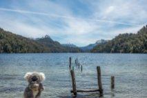 Toujours à Bariloche