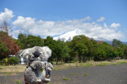 Sur une plage de sable noir au pied du volcan Villarica à Pucon (Chili)